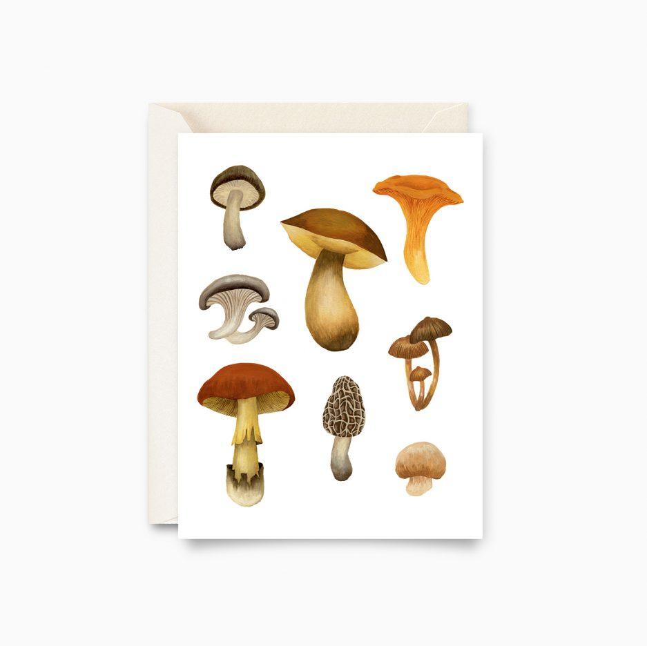 Carte champignons