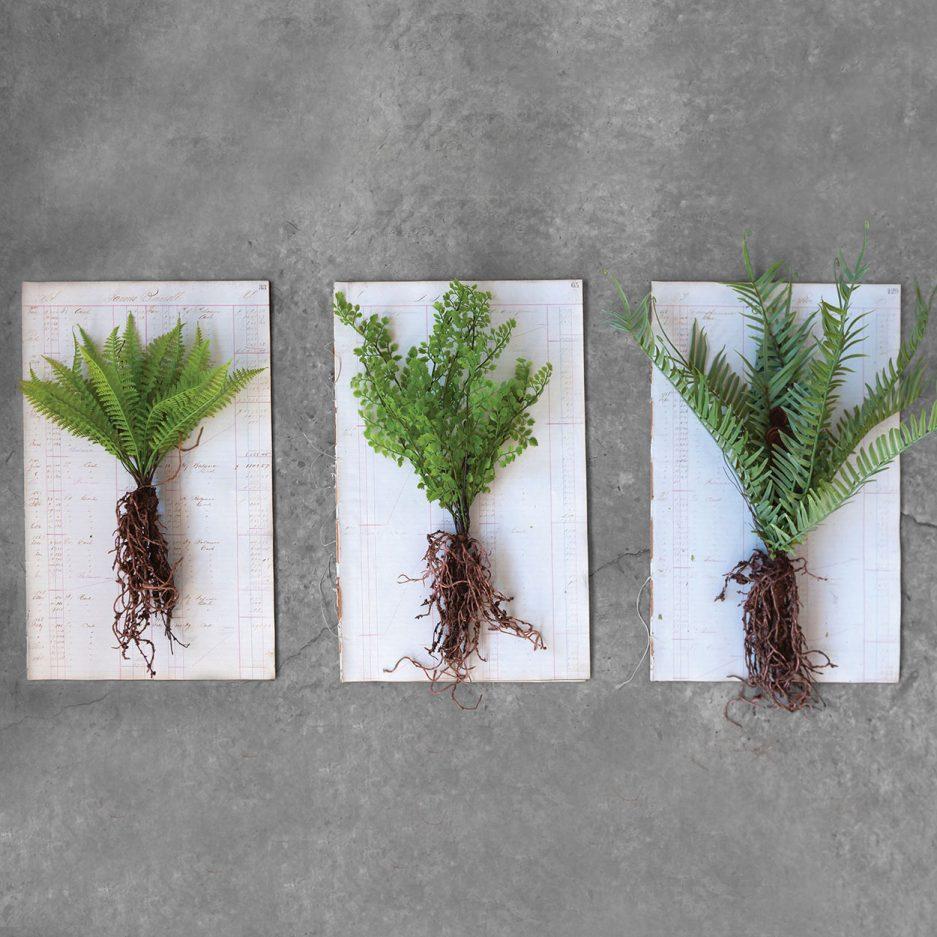 Fausse plante avec racine