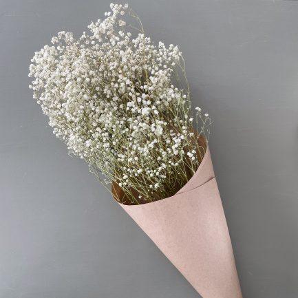Bouquet de gypsophile séché
